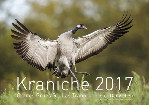 Kraniche 2017.indd