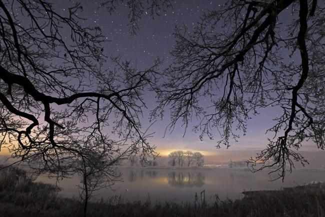 Nachts in der Elbtalaue